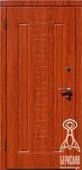 купить двери входные металлические с облицовкой МДФ Змейка Чернигов, цены двери